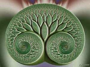 Sacred Dance Tree
